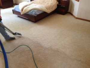 best carpet cleaning services available sparks nevada
