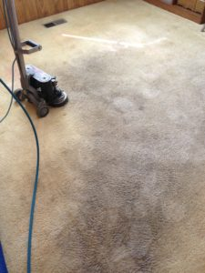 best carpet cleaning services available lake tahoe california